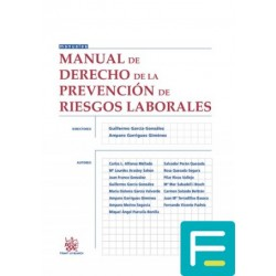 Manual de Derecho de la...