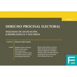 Derecho Procesal Electoral...